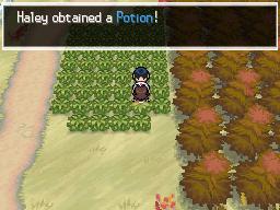 Pokémon Black - #02  Beginnings Finally